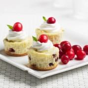 迷你蔓越莓芝士蛋糕