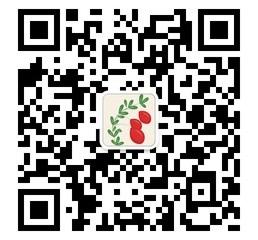 微信QR Code