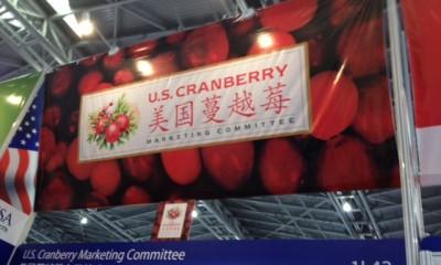 2013中国国际食品添加剂和配料展览会(FIC Show)
