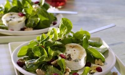 Cranberry-Vinaigrette-Lambs-Lettuce