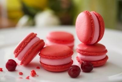 Cranberry Macaron-1