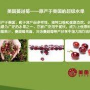 Programme Day At FUDAN University In Shanghai