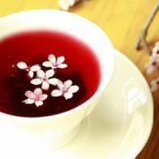 蔓越莓果茶