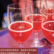 《国际食品加工及包装商情》当精酿啤酒遇上蔓越莓