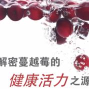 《食品加工及包装商情》解密蔓越莓的健康活力之源