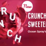 《中国甜食工业》蔓越莓的创新运用